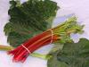 Rhabarbern rotfleischig (Erdbeer-Rhabarbern) Bund à 500 Gramm  Fr. 5.75 (Kg = Fr. 11.50)