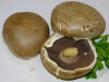 Champignon PORTOBELLO Stück à ca 75 Gramm = Fr. 2.85  (100g = Fr. 3.80)
