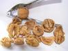 Baumnüsse Grenoble   100 Gramm = Fr. 1.10