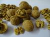Baumnüsse getrocknet, Friedlisberger 100 Gramm = Fr. 1.10
