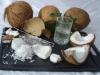 Kokosnuss aus Mauritius Stück = Fr. 3.50