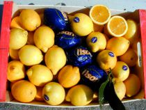 Zitronen extra  Diese wunderbare Frucht ist ein Genuss. Zitronensaft verfeinert Greichte, verstärkt den Geschmack und die Versdaulichkeit. Stück à ca. 110 Gramm